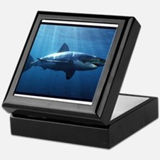 Great White Shark Keepsake Box