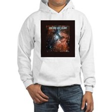 You are not alone in the universe. Hoodie