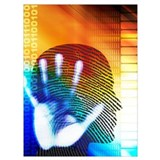 Forensic Wrapped Canvas Art