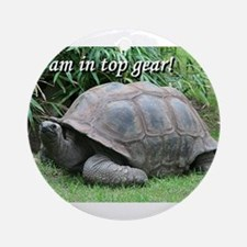 I am in top gear! Tortoise at top speed Ornament (