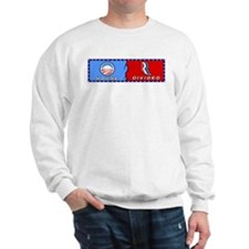 Political House Divided Sweatshirt