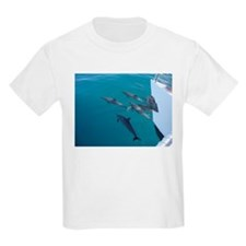 Dolphins Lead The Way T-Shirt
