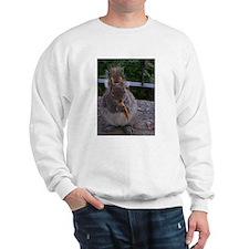 Cheetos for the squirrel Sweatshirt