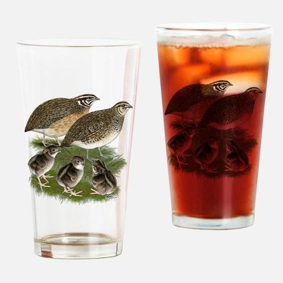 Coturnix Quail Family Drinking Glass
