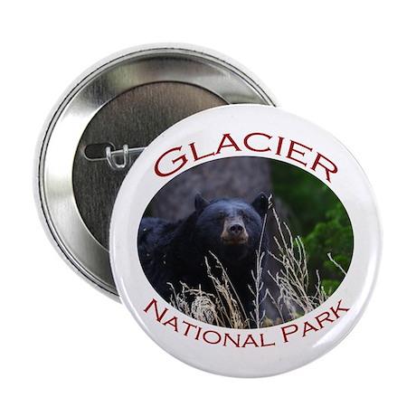 """Glacier National Park...Black Bear 2.25"""" Button"""