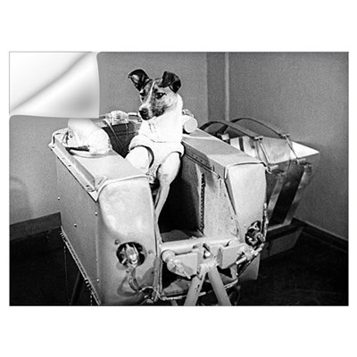 Laika the space dog Wall Decal