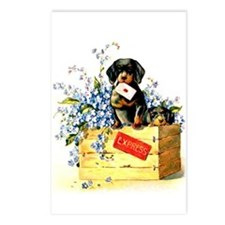 Puppy Love - Postcards (Package of 8)
