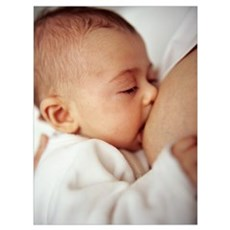 Baby girl breastfeeding Canvas Art