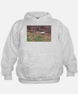 Bathtub in the forest Hoodie