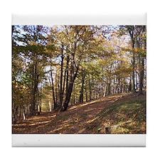 Autumn Forest Tile Coaster