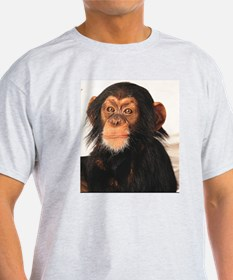 Monkey! Ash Grey T-Shirt