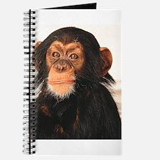 Monkey! Journal