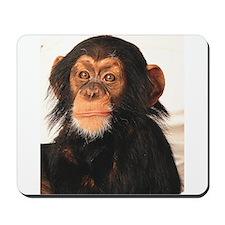 Monkey! Mousepad