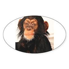 Monkey! Oval Sticker