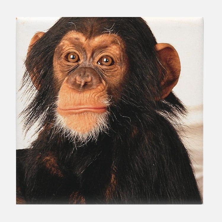 Monkey! Tile Coaster