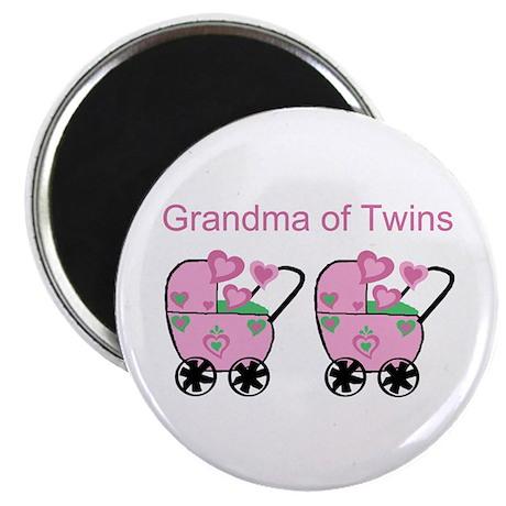 Grandma of Twins (Girls) Magnet