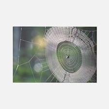 Spiderweb Rectangle Magnet