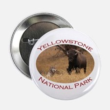 "Yellowstone National Park...Bison & Wolf 2.25"" But"
