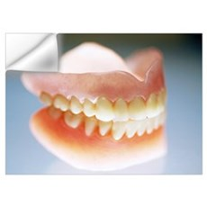 False teeth Wall Decal