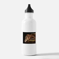 Greyhound Resting Water Bottle