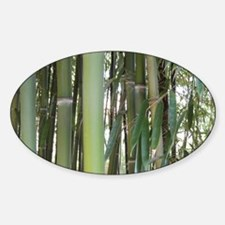 Cute Bamboo leaves Sticker (Oval)