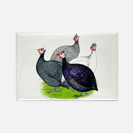 Four Guineafowl Rectangle Magnet