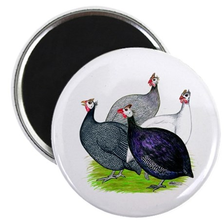 """Four Guineafowl 2.25"""" Magnet (10 pack)"""