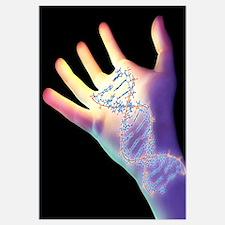 Hand and DNA molecule