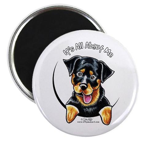 """Rottweiler IAAM 2.25"""" Magnet (10 pack)"""