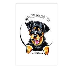 Rottweiler IAAM Postcards (Package of 8)