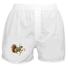 Reindeer Squirrel Boxer Shorts