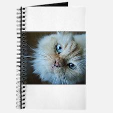 Cute Himalayan Journal