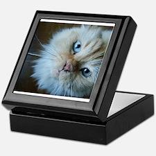 Cute Blue cat Keepsake Box