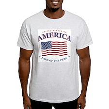 patriotic American Flag.jpg T-Shirt