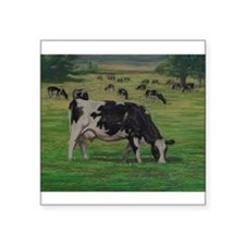 "Holstein Milk Cow in Pasture Square Sticker 3"" x 3"
