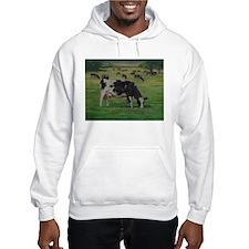 Holstein Milk Cow in Pasture Hoodie