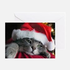 Unique Xmas cat Greeting Card