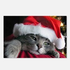 Unique Cat christmas Postcards (Package of 8)