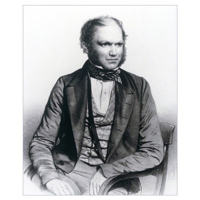 Lithograph of Charles Darwin aged 40 Canvas Art