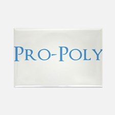 Pro-Poly Rectangle Magnet