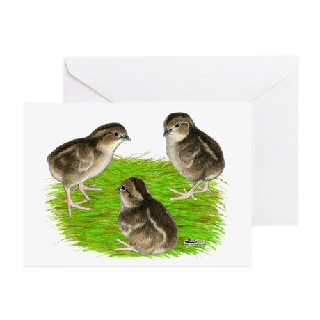 Bobwhite Quail Chicks Greeting Cards (Pk of 10)