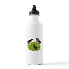 Bobwhite Quail Chicks Water Bottle