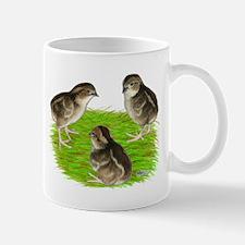 Bobwhite Quail Chicks Mug