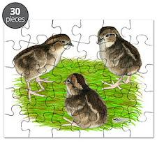 Bobwhite Quail Chicks Puzzle