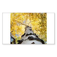 naturalpagan01x.png iPhone 5 Case