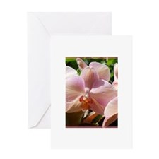Orchids! Pink flowers! Photo! Greeting Card
