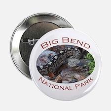 Big Bend National Park...Black-tailed Rattlesnake