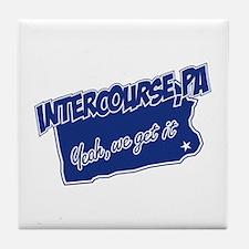 Intercourse Get It Tile Coaster
