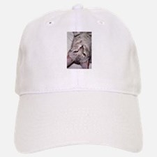 silver bengal kitten Baseball Baseball Cap