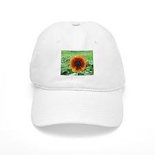 Sunflower Baseball Cap
